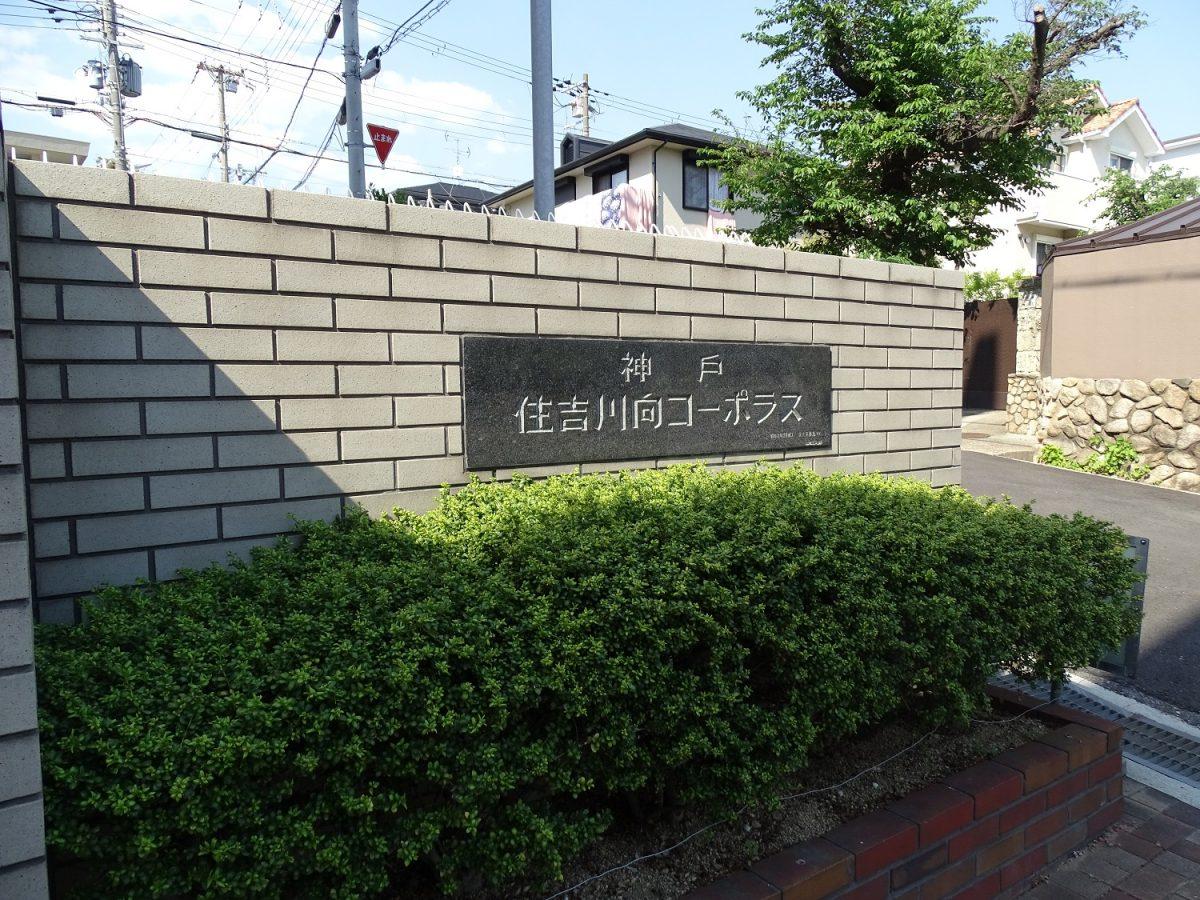 神戸住吉川向コーポラス 神戸市東灘区住吉山手2丁目の物件写真-29