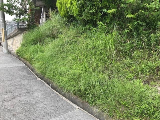 神戸市長田区西丸山町2丁目 売土地の物件写真-5
